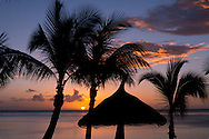 Sunset through palm trees on the beach at the Lux Le Morne Hotel on  Le Mornerabant Peninsula on the south west coast of Mauritius, The Indian Ocean