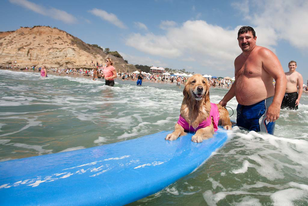 Robert Subkow pushes his dog Jill back out to the waves.