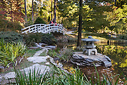 Five miles of walks and pathways meander through landscaped and wooded areas at Sarah P. Duke Gardens at Duke University, Durham, North Carolina, USA. An arched bridge crosses the Japanese Garden to an ornamental Japanese stone lantern. The gardens are divided into four parts, the Historic Core, the H.L Blomquist Garden of Native Plants, the Culberson Asiatic Arboretum and the Page White Garden. The gardens are a memorial to Sarah P. Duke, wife of Benjamin N. Duke, one of Duke University's benefactors. Address: Sarah P. Duke Gardens, 426 Anderson Street, Box 90341, Duke University, Durham, NC 27708-0341.