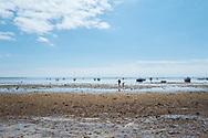 Op zoek naar Venusschelpen en andere zeevruchten. Île de Noirmoutier, Vendée, Frankrijk  - Looking for clam and other food from the sea.   Île de Noirmoutier, Vendée, France