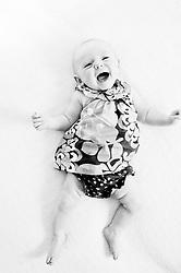 Ember. 13 weeks.<br /> photo by Laura Mueller<br /> www.lauramuellerphotography.com