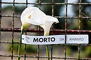 Casale Monferrato, Piemonte, Italia, Italy. 28 apr 2011. World Day against asbestos. Giornata mondiale contro l'amianto. Congress in the Theather of Casale Monferrato. White flowers for the victims.