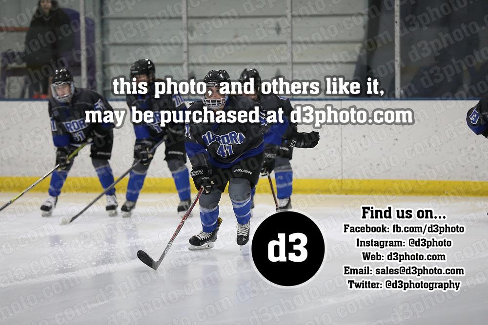 Women's Ice Hockey: University of Wisconsin-Stevens Point Pointers vs. Aurora University Spartans