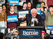 02 MARCH 2020 - ST. PAUL, MINNESOTA: US Senator BERNIE SANDERS (Ind-VT) speaks at a Get Out the Vote rally in the RiverCentre in St. Paul. More than 8,400 people attended the rally. Minnesota is a Super Tuesday state this year and Minnesotans will go to the polls Tuesday. Minnesota Sen. Amy Klobuchar was expected to win her home state, but she dropped out early Monday, March 2.          PHOTO BY JACK KURTZ