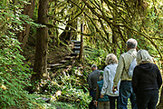 An group of visitors are escorted by an armed guide along the trail through temperate rain forests to the bear observation platform at Anan Creek in the Tongass National Forest, Alaska. Anan Creek is one of the most prolific salmon runs in Alaska and dozens of black and brown bears gather yearly to feast on the spawning salmon.