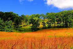 Pleasant Valley Conservancy
