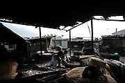 Benin March 1, 2008  Beninese woman selling in informal fish market in harbor