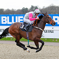 Discovery Bay and Robert Tart winning the 1.30 race