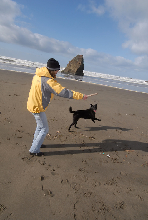 Playing fetch with a dog and a stick on the beach at Mendocino.