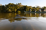Tourists on an afternoon boat trip in the Pantanal, Mato Grosso, Brazil