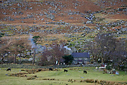 Hill farm in Snowdonia National Park, North Wales, United Kingdom