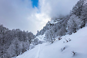 Winter trip to Ray hut in Central Balkan