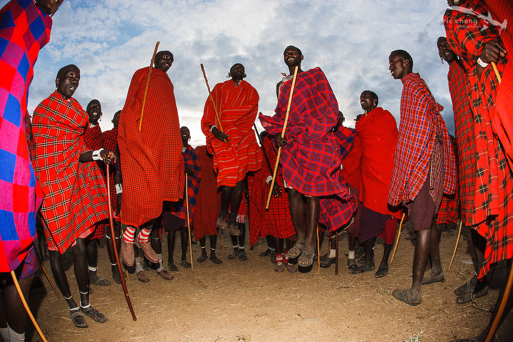 "The ""adumu"" jumping dance, performed at a manyatta, an extended Maasai party in which rites of passage are performed. Near Loliondo, Tanzania."