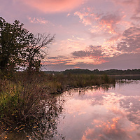 Dawn on the lake at John Muir Memorial Park