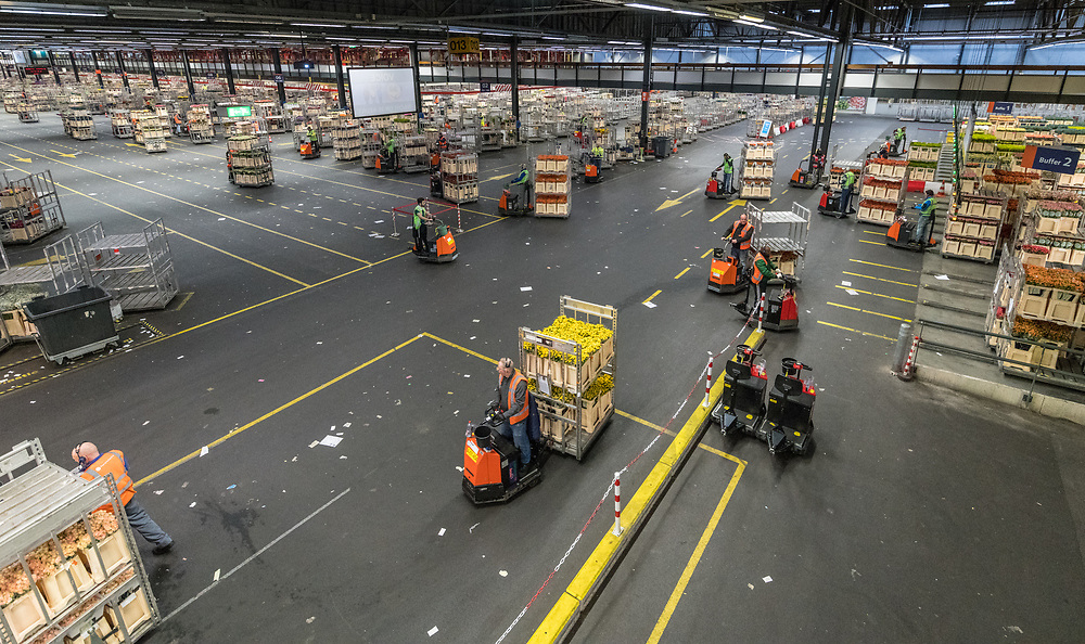 Workers in the warehouse at the worlds largest flower auction, Royal Flora Holland use machinery to move the carts of flowers. Amsterdam, Netherlands