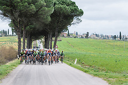 The race is all together as the peloton approach the first gravel section - Strade Bianche Elite Women 2016