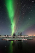 Northern lights at Þingvellir National Park, southwest Iceland