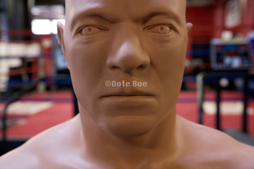 close up of the face of a muscular boxing punch dummy in a boxing school