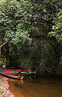 The Murat Longhouse located on the Skrang River in Sarawak is hidden by dense vegetation.