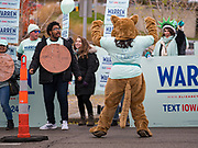 01 NOVEMBER 2019 - DES MOINES, IOWA: A person in a cougar outfit, the unofficial mascot of supporters of presidential candidate Elizabeth Warren,  rallies on the streets of Des Moines Friday. Campaign volunteers and surrogates rallied on the streets of Des Moines before the Iowa Democratic Party Liberty and Justice Celebration in the Wells Fargo Arena. About 14,000 people attended the evening event which featured speeches from Democratic candidates for president.         PHOTO BY JACK KURTZ