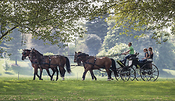 © Licensed to London News Pictures. 08/05/2018. London, UK. Carriage drivers exercise their horses by the River Thames near Datchet ahead 75th Royal Windsor Horse Show. The five day event takes place in the grounds of Windsor Castle. The Queen and the Duke of Edinburgh usually attend. Photo credit: Peter Macdiarmid/LNP