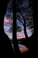 View of Fitz Roy at sunrise through lenga trees, Laguna Capri, Los Glaciares National Park, Argentina.