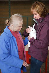 Carer showing rabbit to woman with learning disability on trip to farm