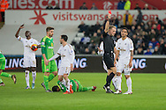 Kyle Naughton of Swansea (far right) is shown a red card during the Barclays Premier League match between Swansea City and Sunderland at the Liberty Stadium, Swansea, Wales on 13 January 2016. Photo by Mark Hawkins.