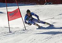 Giant slalom race for Collegiate Carnival at Attitash January 24, 2014.  ©2014 Karen Bobotas Photographer