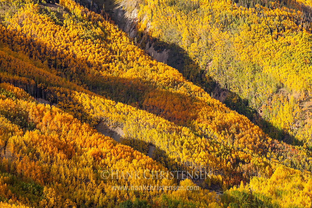 Mountain slopes exhibit a kaleidoscope of color in the fall, Ouray, Colorado