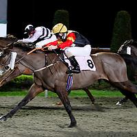 Prince Charlemagne and Matthew Cosham winning the 5.45 race