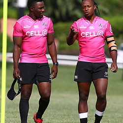 DURBAN, SOUTH AFRICA - FEBRUARY 27: Lwazi Mvovo with S'busiso Nkosi during the Cell C Sharks training session at Growthpoint Kings Park on February 27, 2018 in Durban, South Africa. (Photo by Steve Haag/Gallo Images)