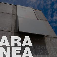 Aranea, Grupo. Francisco Leiva