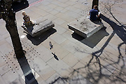 Two strangers sit adjacent each other on stone benches as a pigeon is about to land.