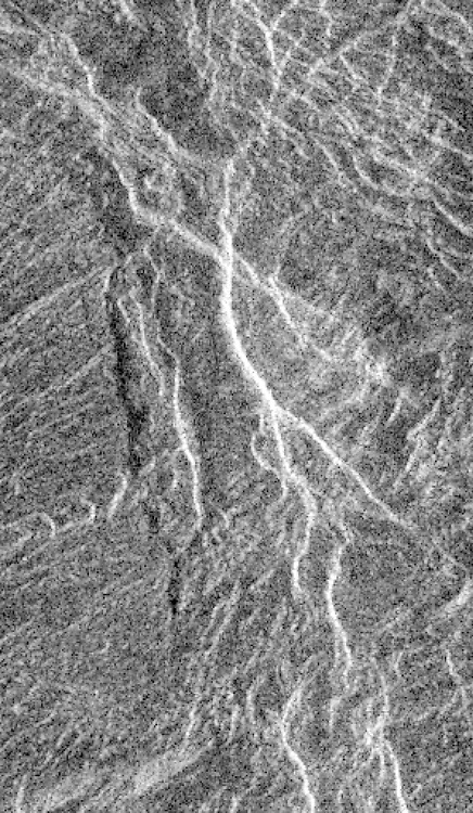 A region in Aphrodite Terra is shown in this image of Venus, where landslides have taken place. Magellan.