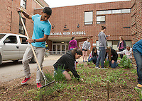 """Devi Dhakal and Samantha Silva work in the front gardens at Laconia High School during Saturday's """"clean up"""" day for seniors to keep with their scheduled graduation date of June 6th.  (Karen Bobotas/for the Laconia Daily Sun)"""