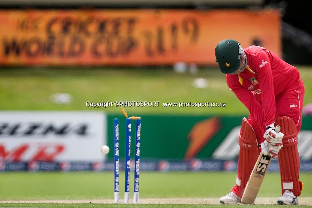 The last wicket to fall in the Zimbabwean innings, Calum Price. New Zealand v Zimbabwe, U19 Cricket World Cup group stage match, Bert Sutcliffe Oval, Lincoln, Tuesday 19 January 2010. Photo : Joseph Johnson/PHOTOSPORT