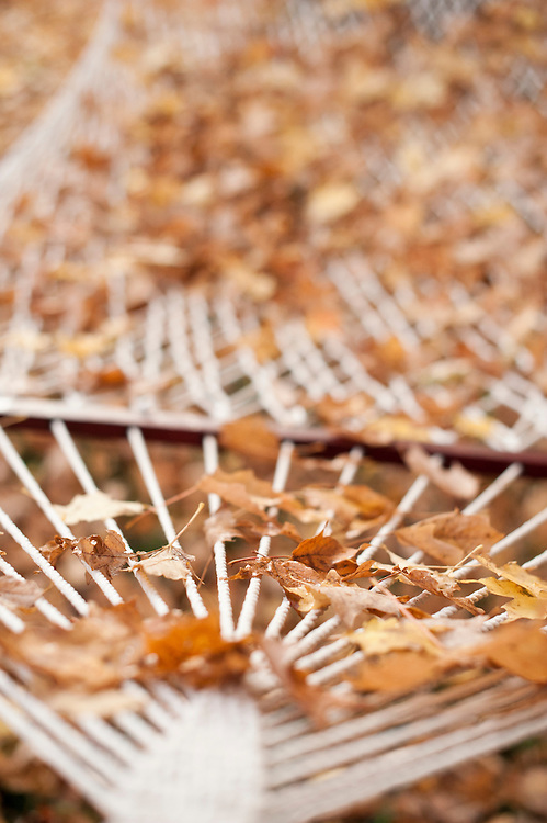 A white cotton hammock covered in fallen leaves in autumn marks the end of summer.