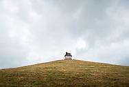 """De Leeuw van Waterloo (Frans: Butte du Lion) is een herdenkingsmonument voor de Slag bij Waterloo (18 juni 1815) dat op initiatief van koning Willem I van het Verenigd Koninkrijk der Nederlanden werd opgericht. Het monument staat op het grondgebied van de gemeente Eigenbrakel in de Belgische provincie Waals-Brabant.[1] Het monument bestaat uit een reusachtige gietijzeren leeuw die op een kunstmatige heuvel 45 meter boven de omringende vlakte uittroont. Foto: Gerrit de Heus   The Lion's Mound (French: Butte du Lion, lit. """"Lion's Hillock/Knoll""""; Dutch: Leeuw van Waterloo, lit. """"Lion of Waterloo"""") is a large conical artificial hill located in the municipality of Braine-l'Alleud (Dutch: Eigenbrakel), Belgium. King William I of the Netherlands ordered its construction in 1820, and it was completed in 1826. It commemorates the location on the battlefield of Waterloo where a musket ball hit the shoulder of William II of the Netherlands (the Prince of Orange) and knocked him from his horse during the battle.[1] It is also a memorial of the Battle of Quatre Bras, which had been fought two days earlier, on 16 June 1815. Photo: Gerrit de Heus"""