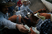 Coleadero, the most popular suerte, is sometimes singled out for an afternoon of practice or informal competition. At Rodeo Los Corrales in Comfort, Texas, charros pay $20 for a three runs at a steer.