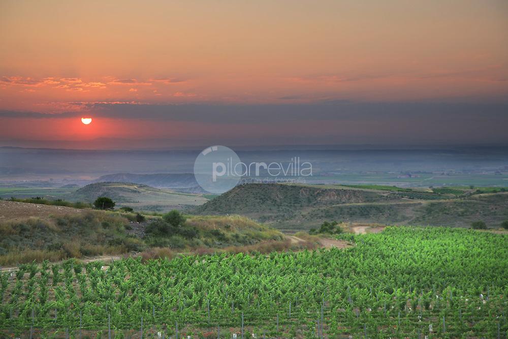 Aldeanueva del Ebro. La Rioja ©Daniel Acevedo / PILAR REVILLA