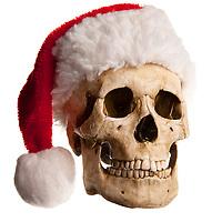Happy Holiday Stock Photos