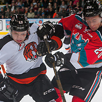 110516 Medicine Hat Tigers at Kelowna Rockets