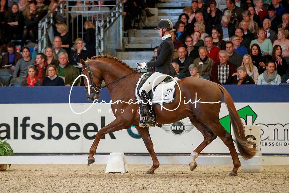 Lenaerts Joyce, NED, Iconic B<br /> KWPN Stallionshow - 's Hertogenbosch 2018<br /> © Hippo Foto - Dirk Caremans<br /> 02/02/2018