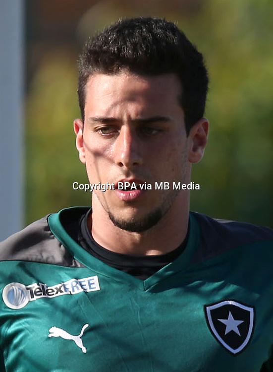 Brazilian Football League Serie A /<br /> ( Botafogo de Futebol e Regatas ) -<br /> Helton Brant Aleixo Leite &quot; Helton Leite &quot;
