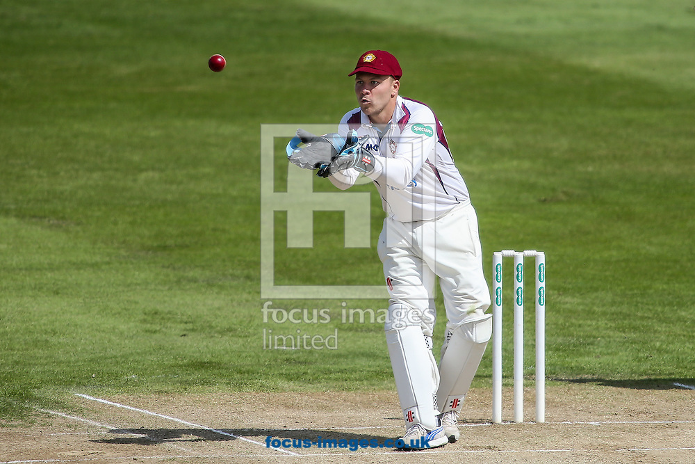 Adam Rossington of Northamptonshire CCC keeping wicket during the Specsavers County C'ship Div Two match at the County Ground, Northampton<br /> Picture by Andy Kearns/Focus Images Ltd 0781 864 4264<br /> 16/05/2016