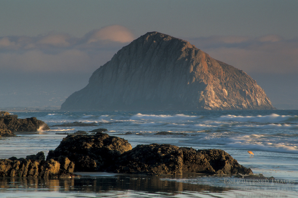 Morro Rock, ocean waves, and fog at sunset from Morro Strand State Beach, near Cayucos and Morro Bay, California