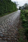 Molenberg climb, Tour of Flanders 2014