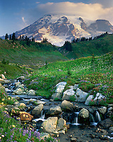 Mount Rainier 14,411¬?ft (4,392¬?m) from Edith Creek, Mount Rainier National Park Washington USA