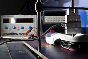 Belo Horizonte_MG, Brasil...Novo calcado esportivo desenvolvido pela equipe de engenharia mecanica da UFMG, no laboratorio de bioengenharia...The new athletic shoes developed by mechanical engineering, UFMG, the lab of bioengineering...Foto: LEO DUMOND / NITRO